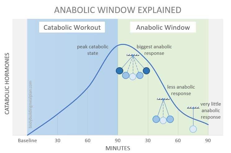 Anabolic Window Cover
