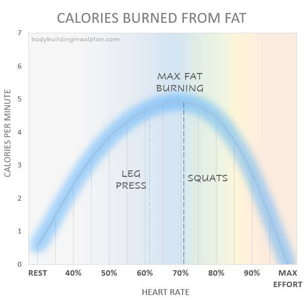 Benefits Of Squats Fat Burning