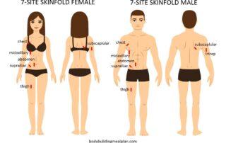 Body Fat Percentage Calculator Caliper Male Female