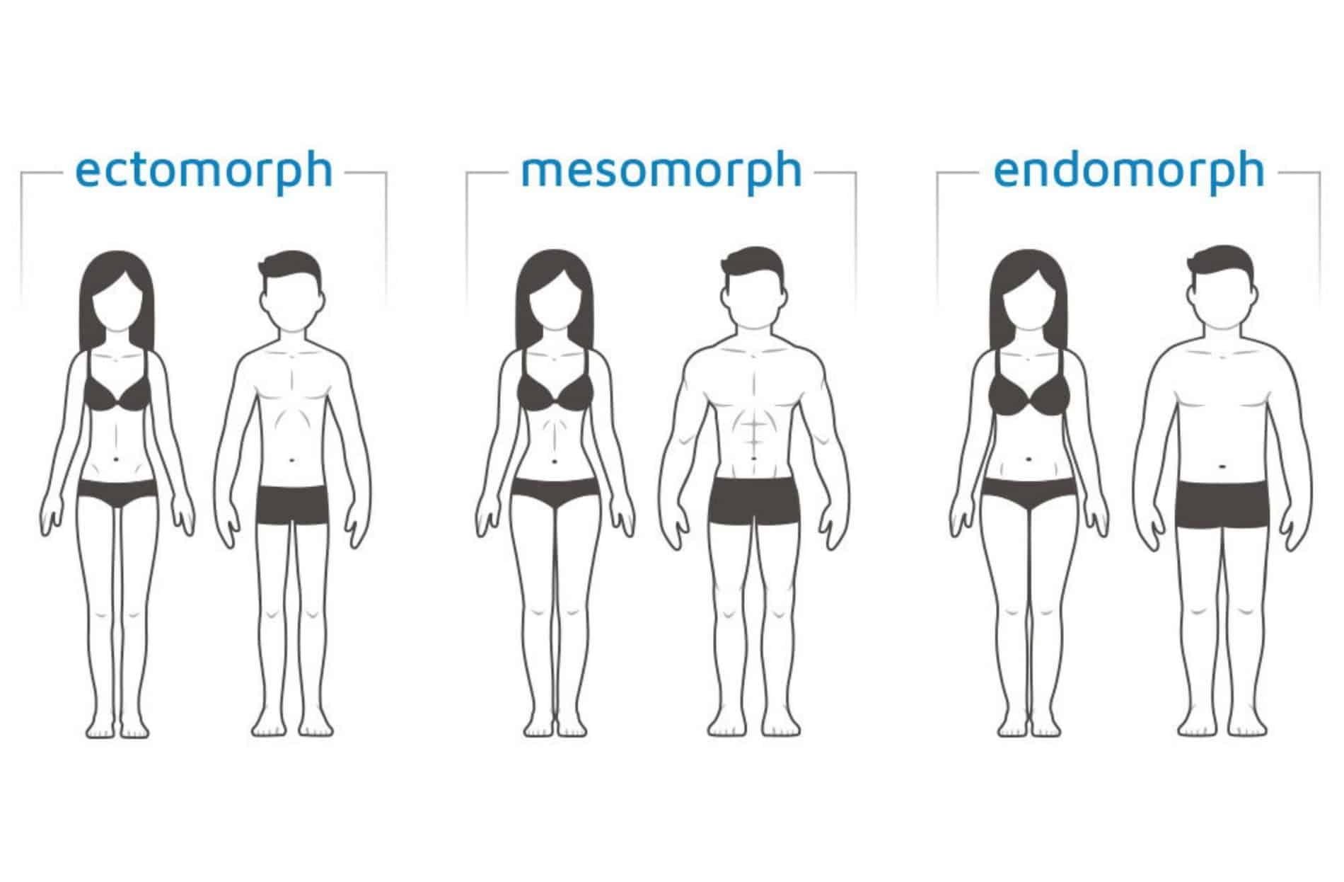 Body Type Quiz 3