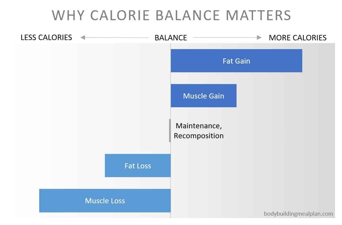Bodybuilding Nutrition Calorie Balance