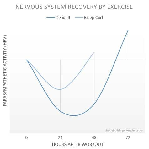 Bro Split Workout Nervous System Recovery