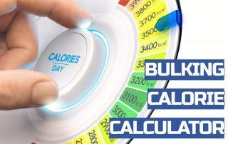 bulking calorie calculator