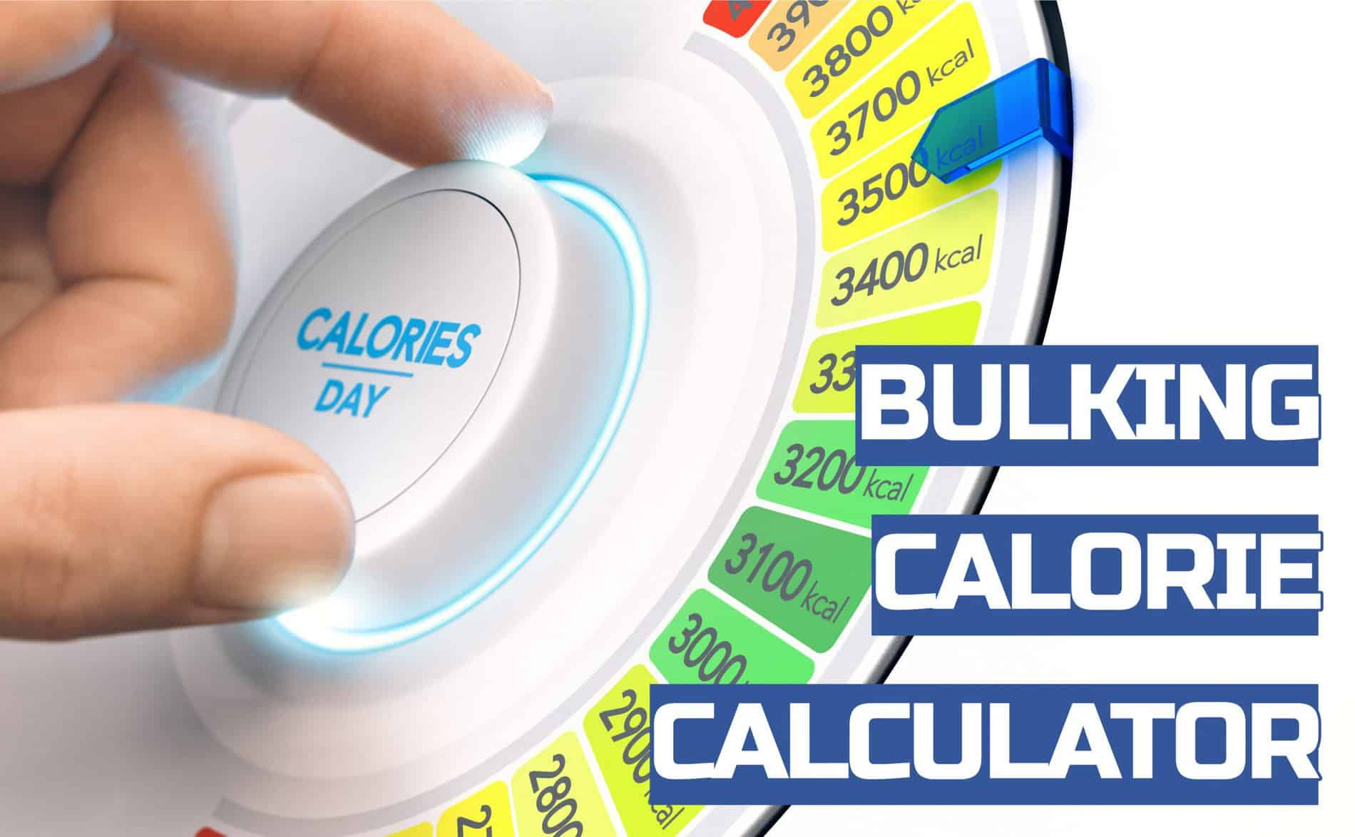 bulking calorie calculator