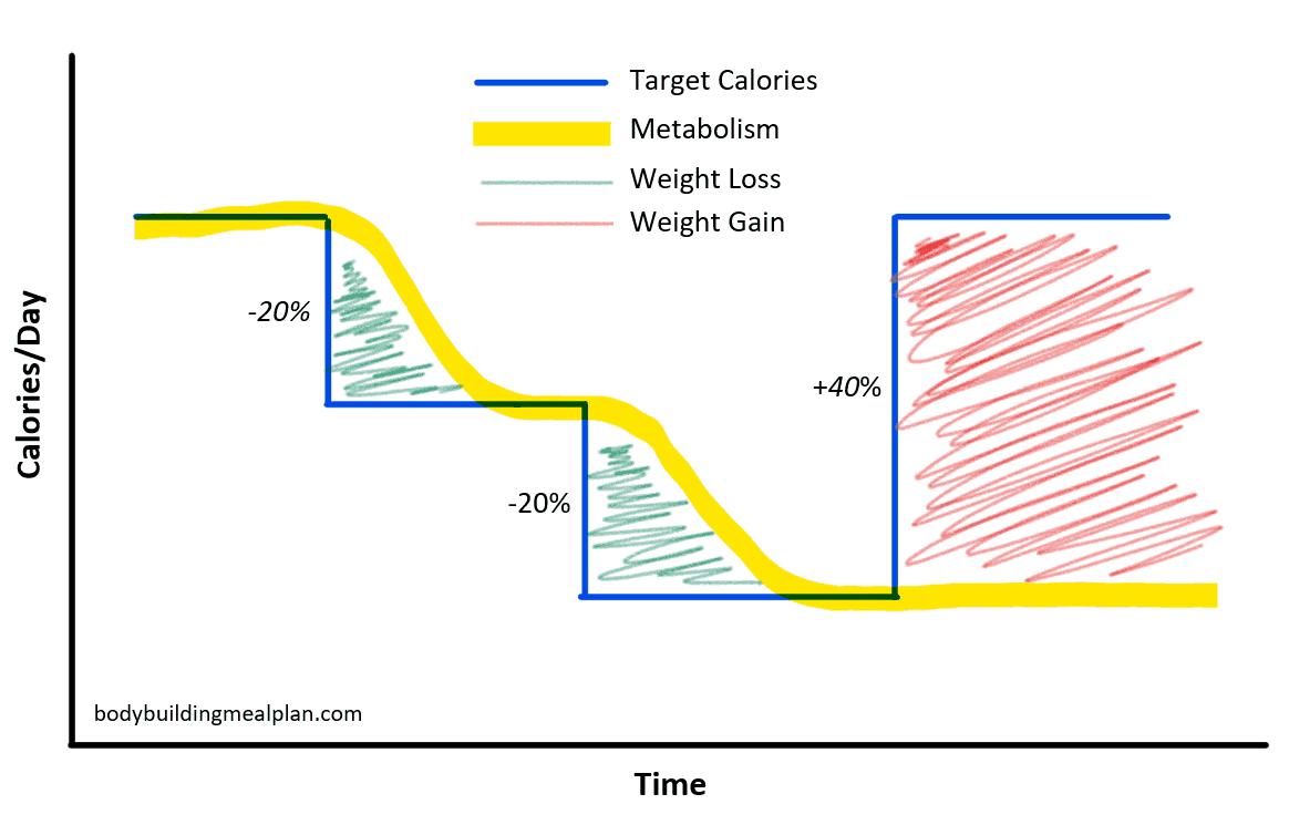 endomorph diet calorie deficit