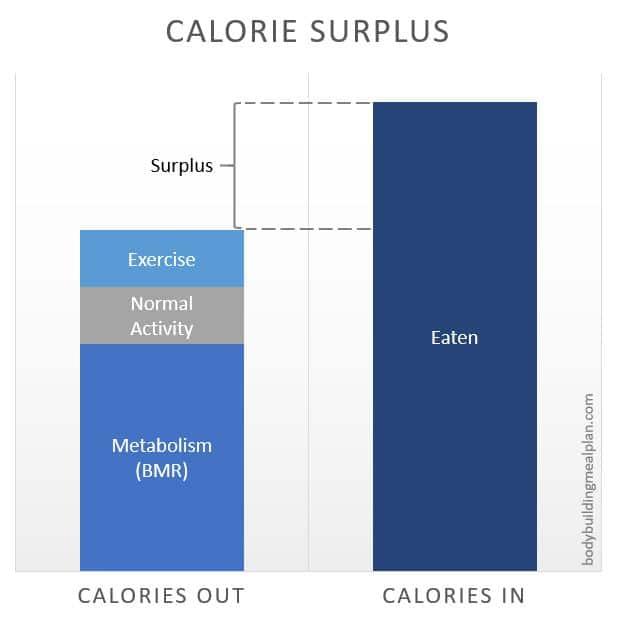 Metabolic Type Quiz Calorie Surplus