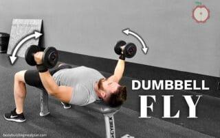 Dumbbell Fly