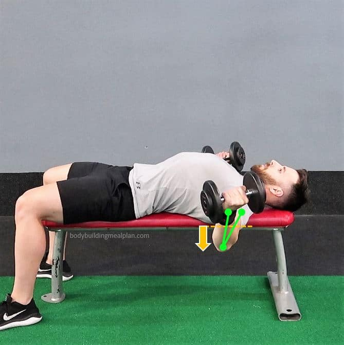Dumbbell Fly Form Stretch