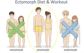 Ectomorph Diet And Workout