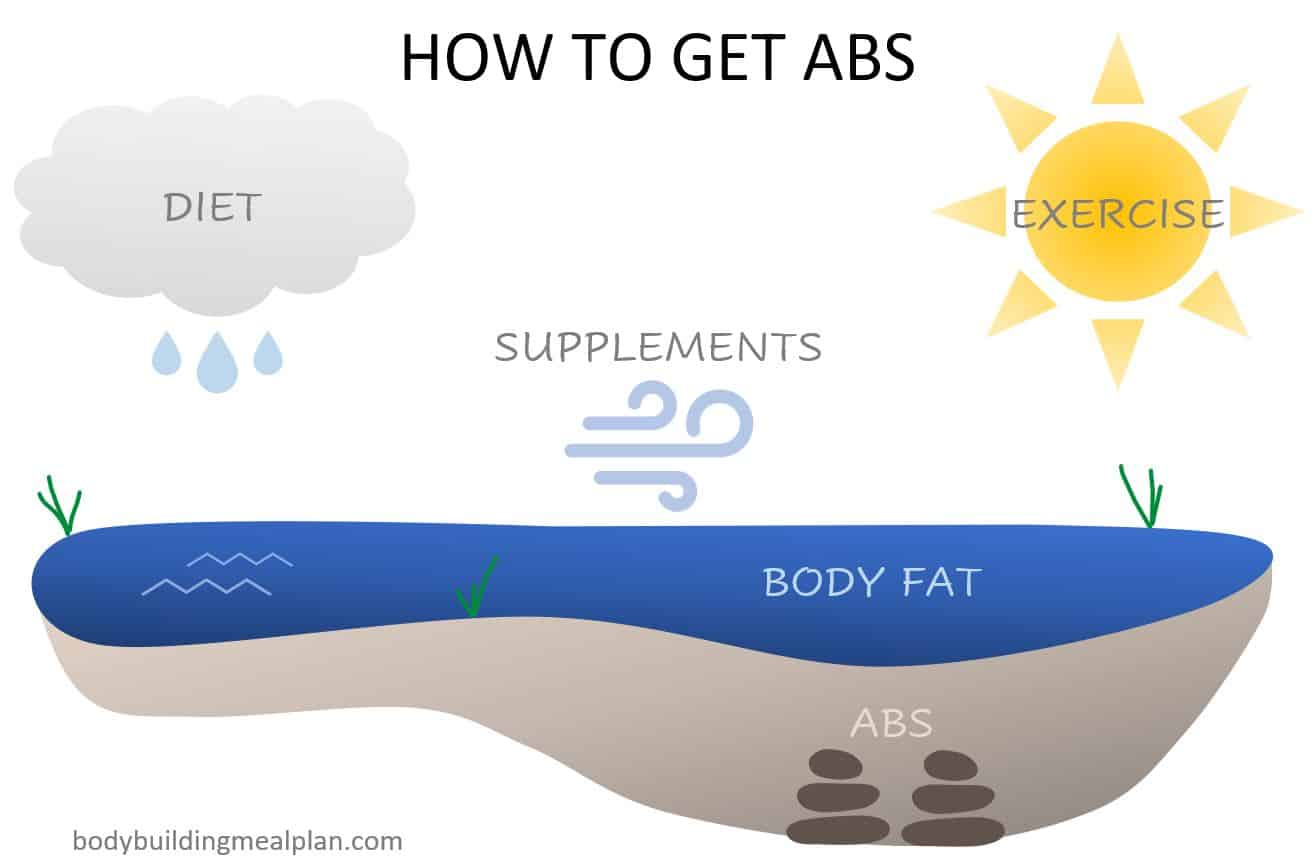 How To Get Abs Pond Analogy
