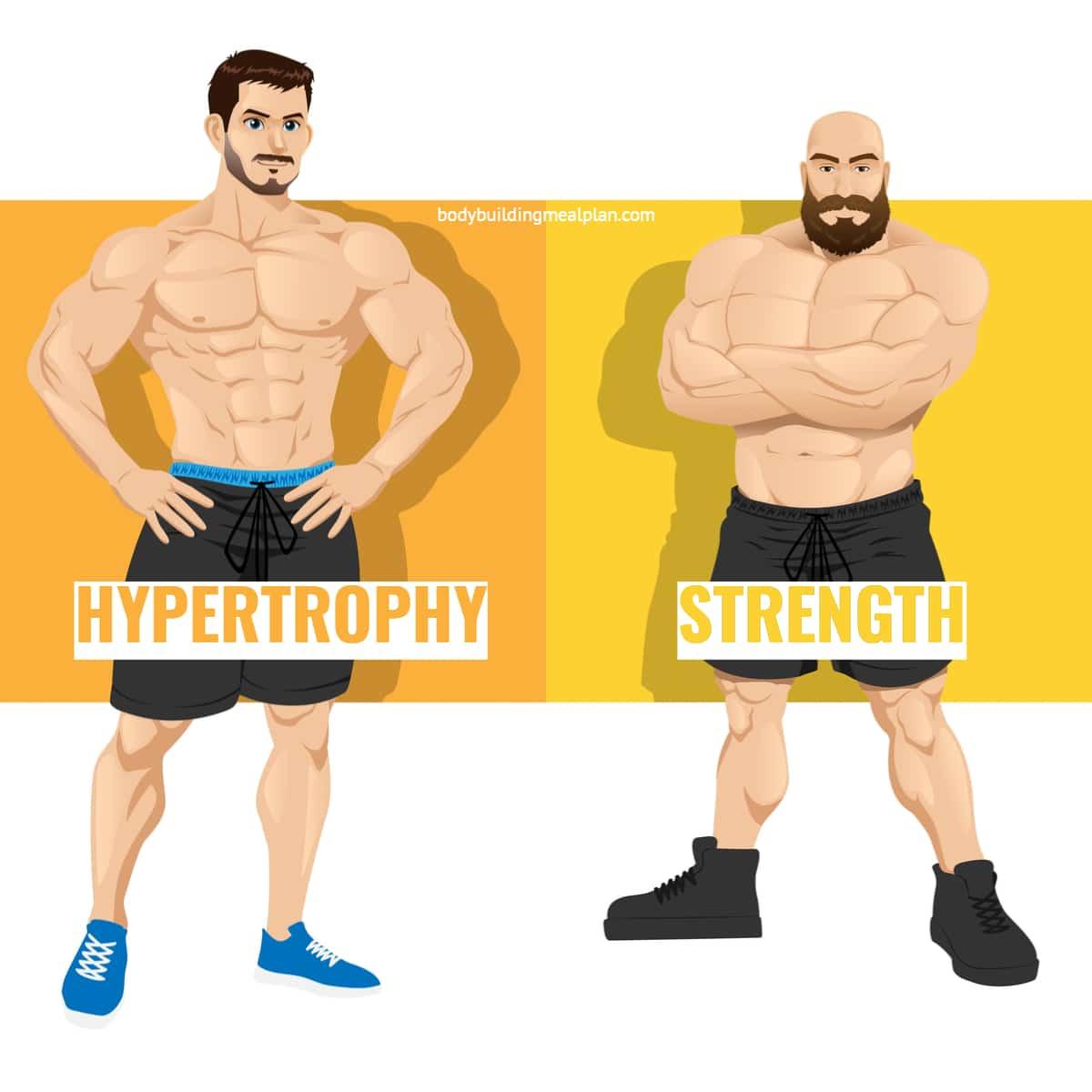 Hypertrophy vs Strength Training