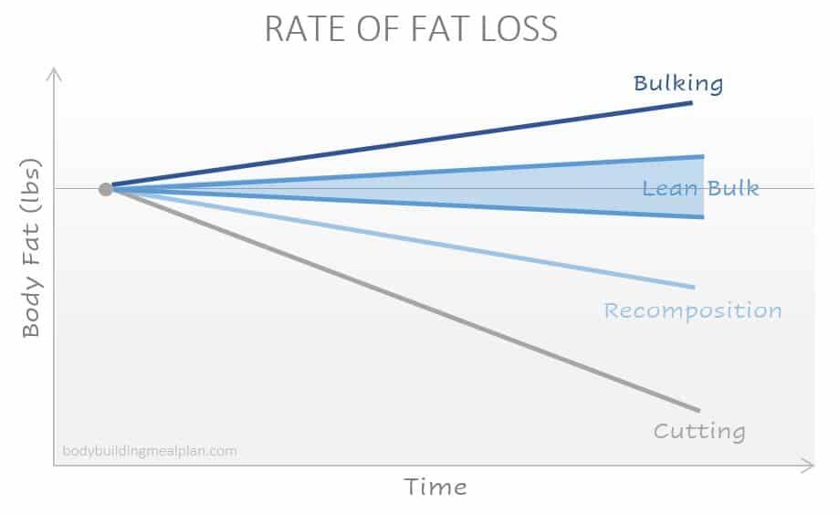 Lean bulk rate of fat loss