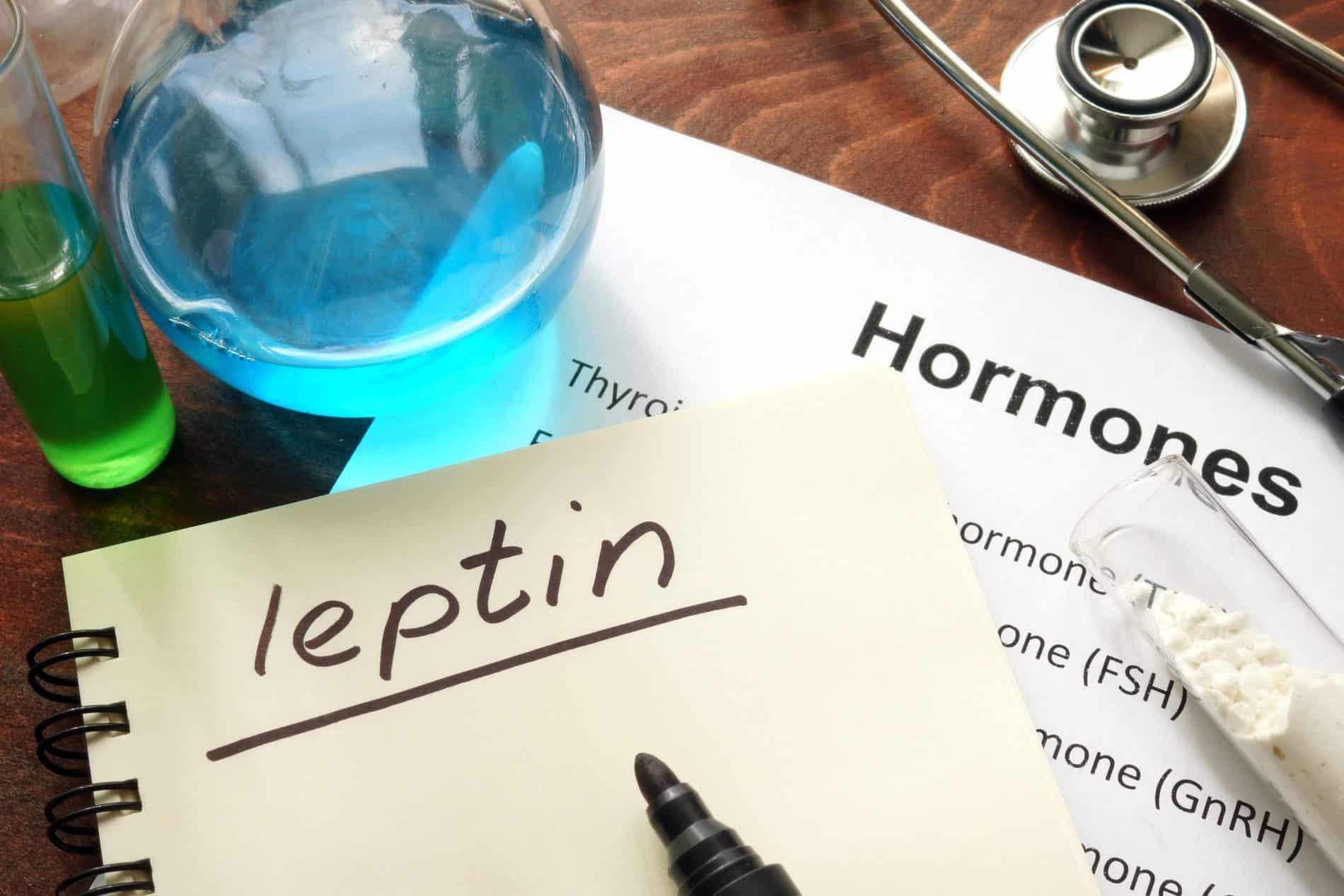 Leptin Hormone