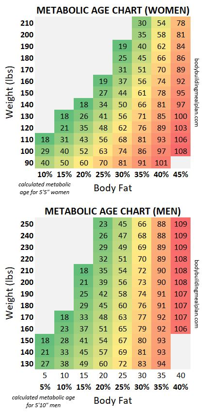 Metabolic Age Chart Men and Women
