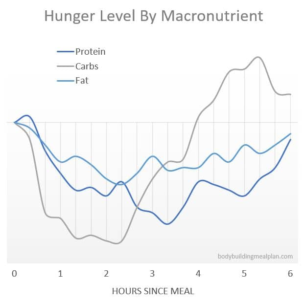Metabolic Type Quiz Hunger Level