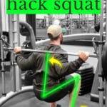 Smith Machine Hack Squat Pinterest
