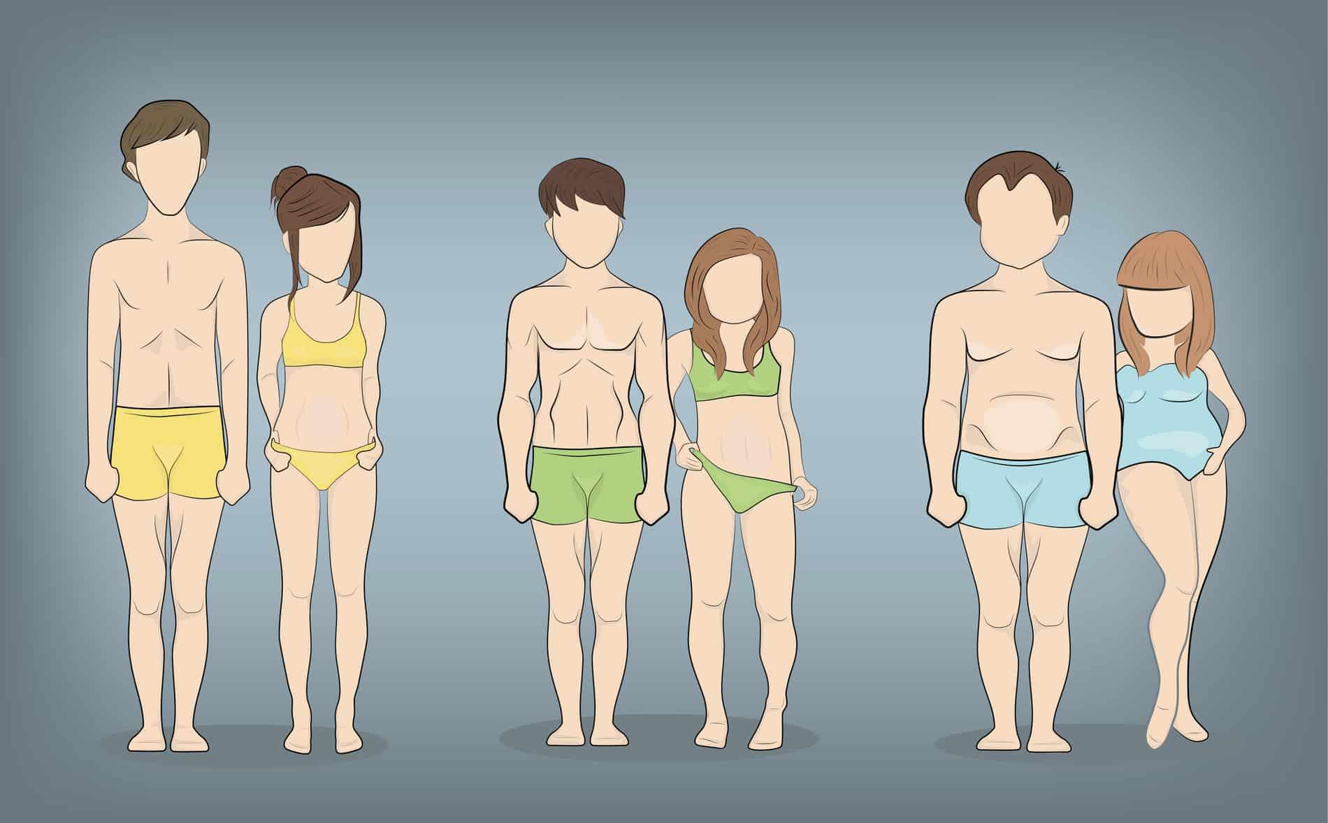 endomorph body type quiz