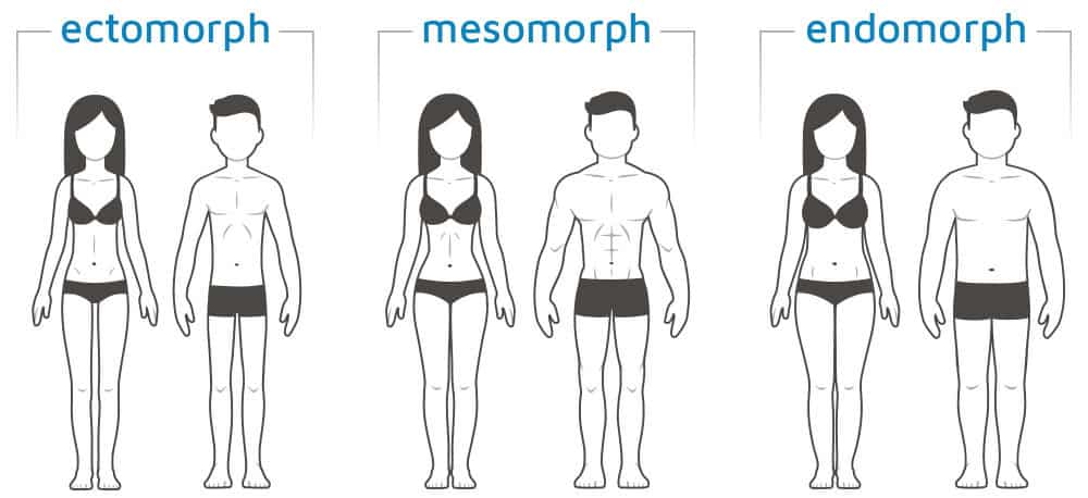 male female body type calculator