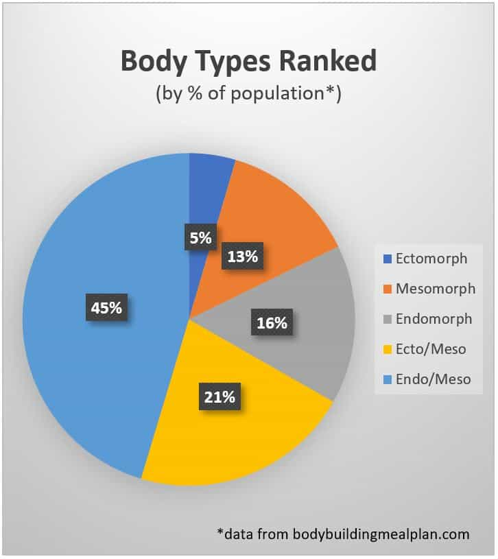 endomorph diet body types ranked