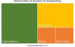 bodybuilding nutrition relativity matrix