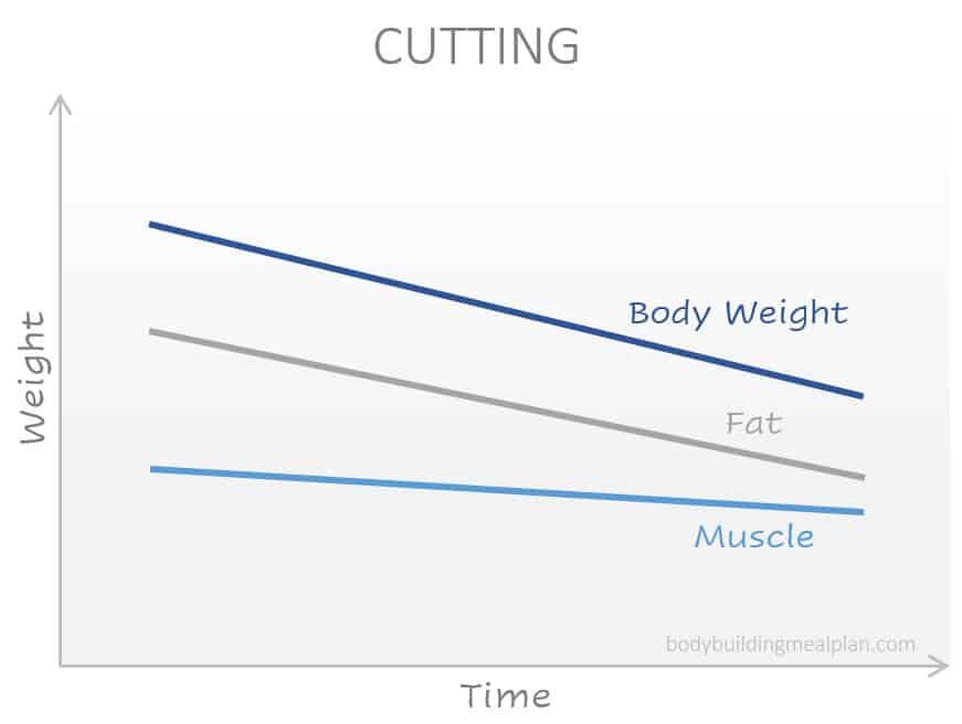 bulk vs cut - cutting