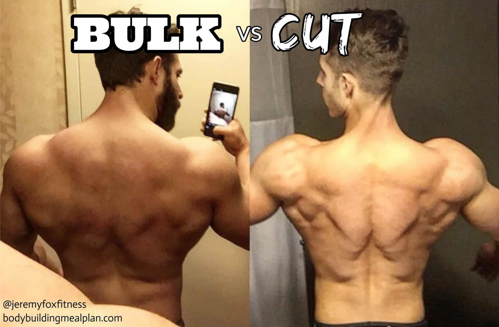 bulk vs cut example