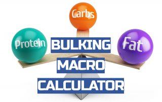 bulking macro calculator
