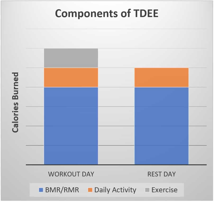 components of tdee calculator