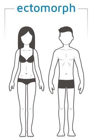 endo-meso body type