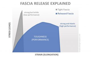 fascia release explained