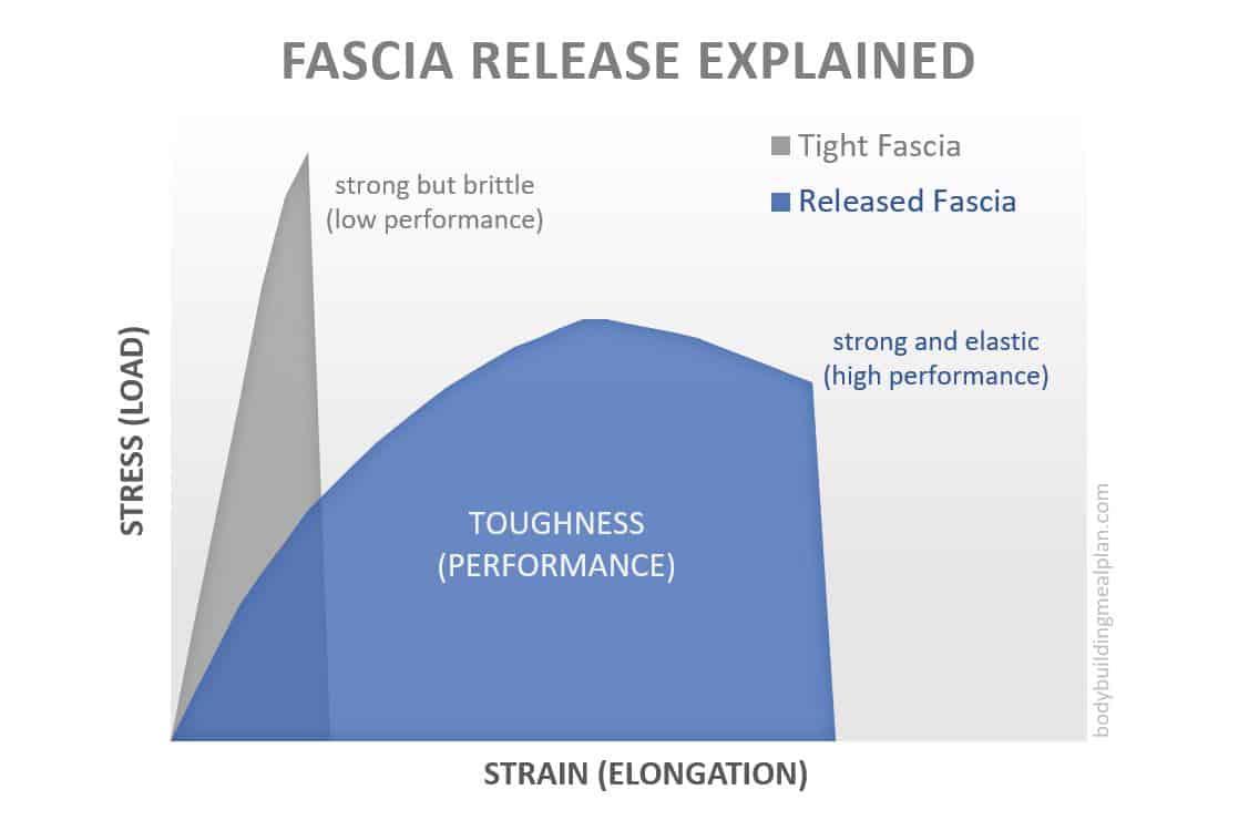 fascia release explained
