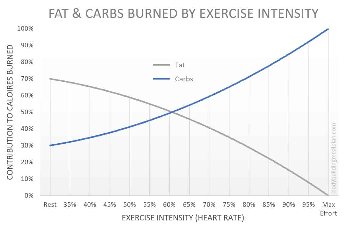 macro calculator carbs burned