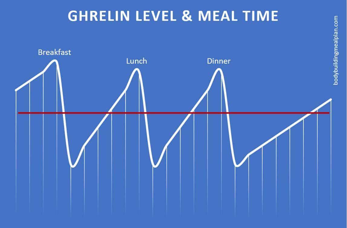 3 large meals