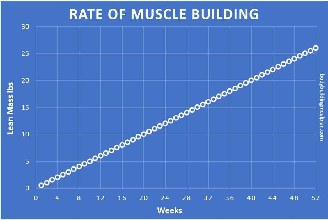 how long does it take to build muscle chart