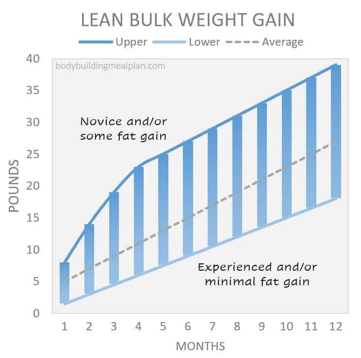Weight Gain During a Lean Bulk