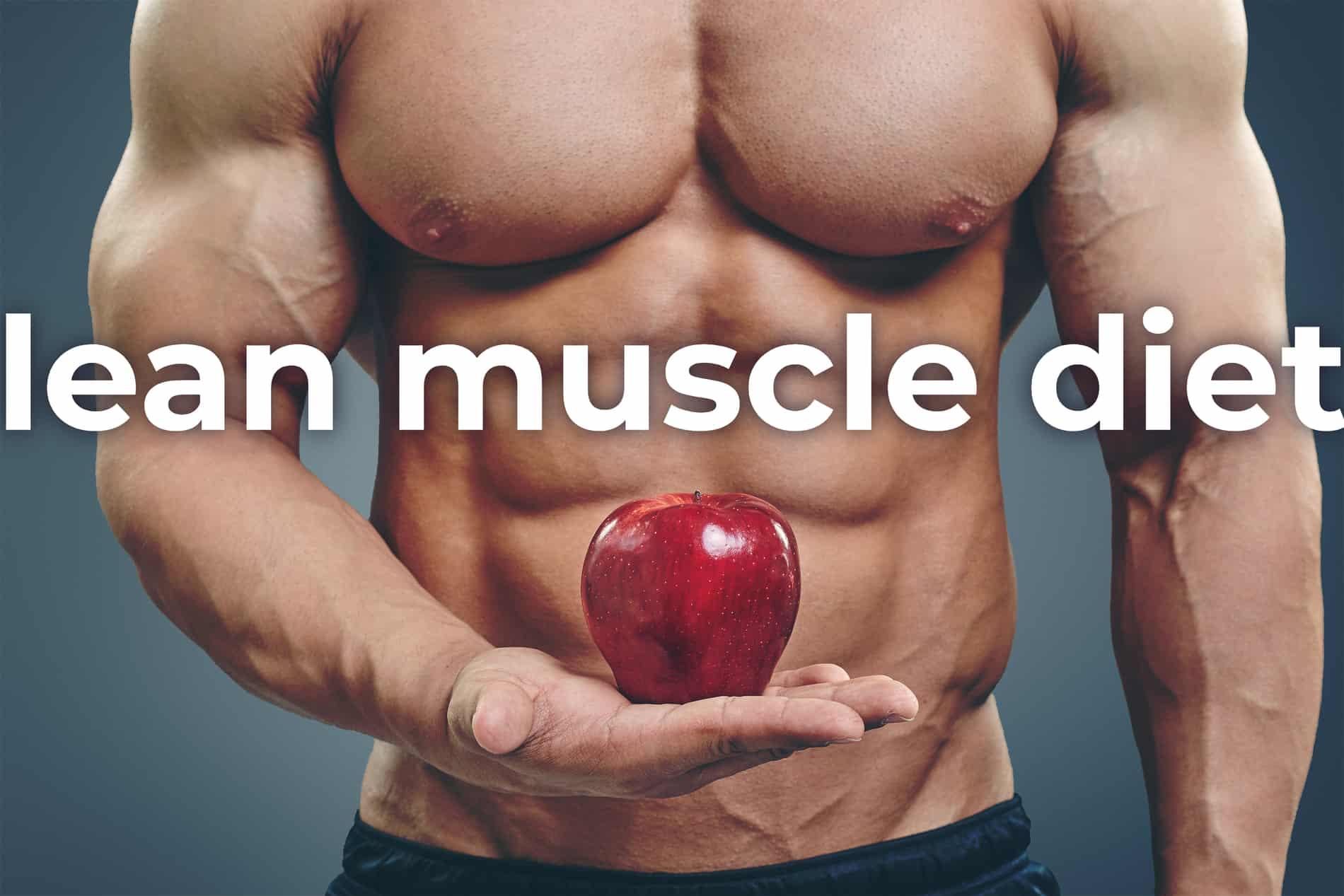 get lean muscle diet plan