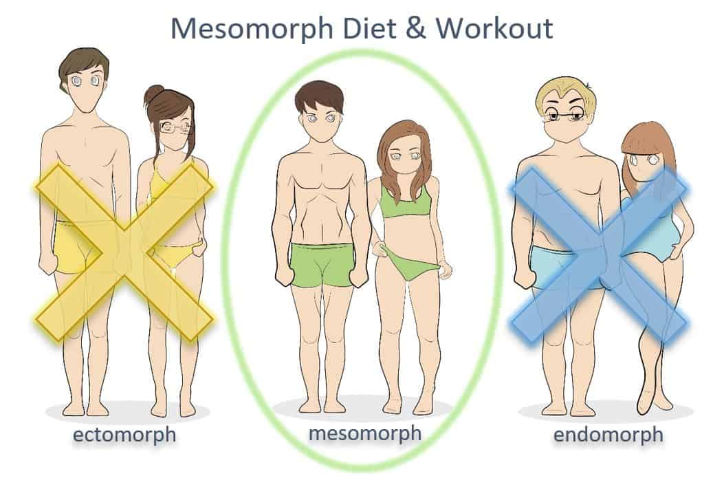 mesomorph diet and workout