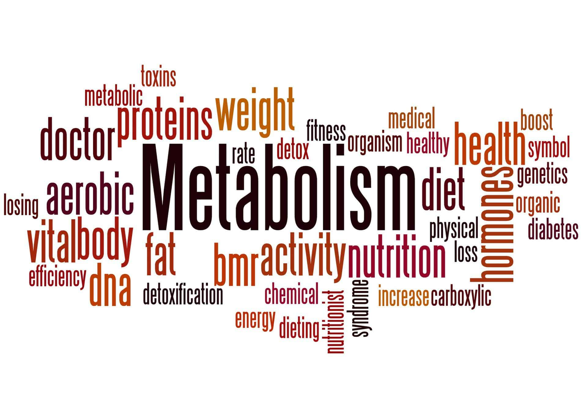 metabolic confusion