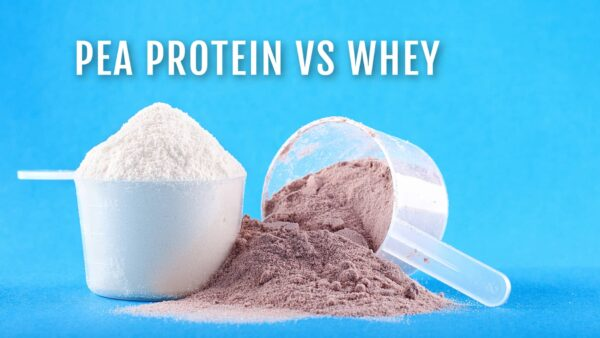 pea protein vs whey