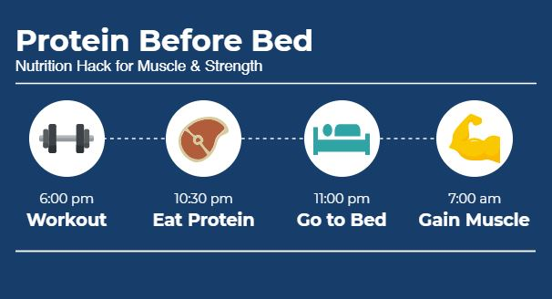 protein before bed infographic
