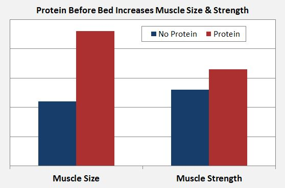 protein before bed muscle gain