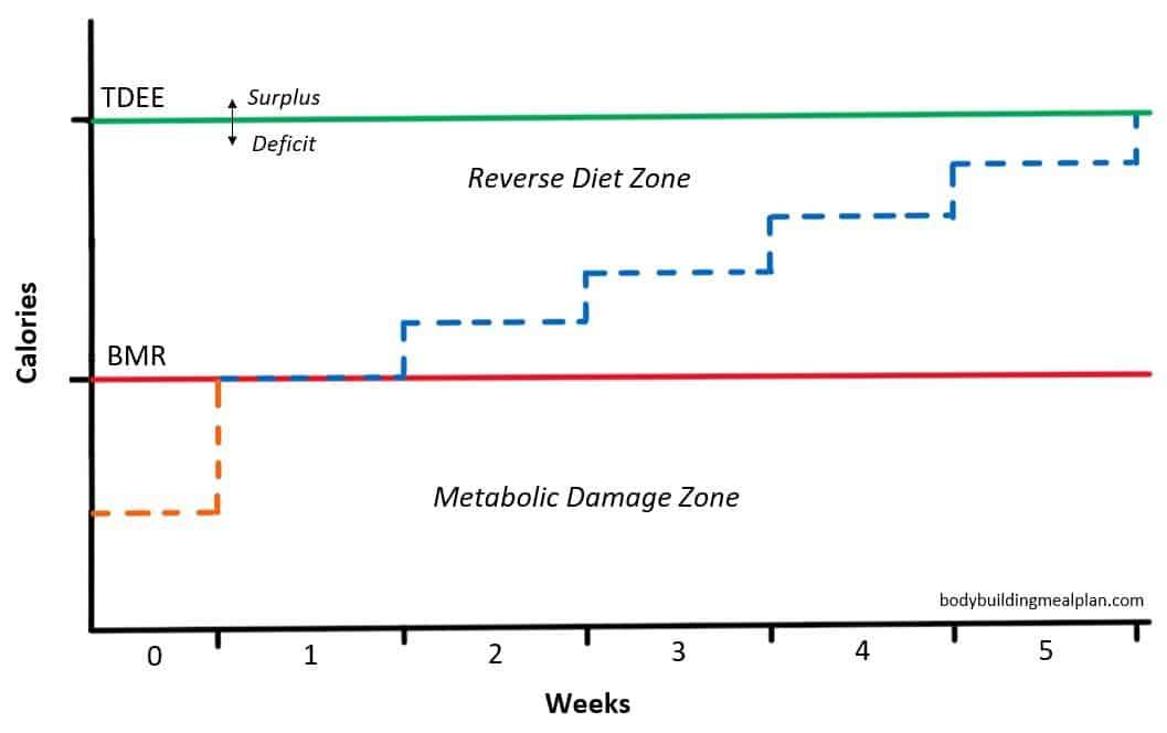 reverse dieting graph