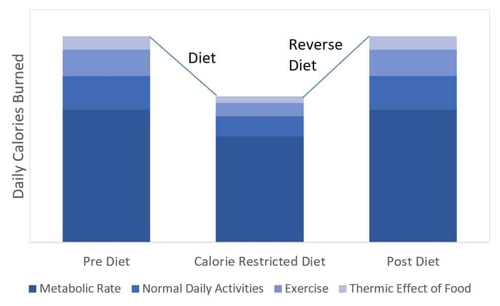 reverse dieting calories burned