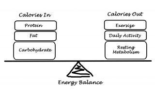 tdee energy balance