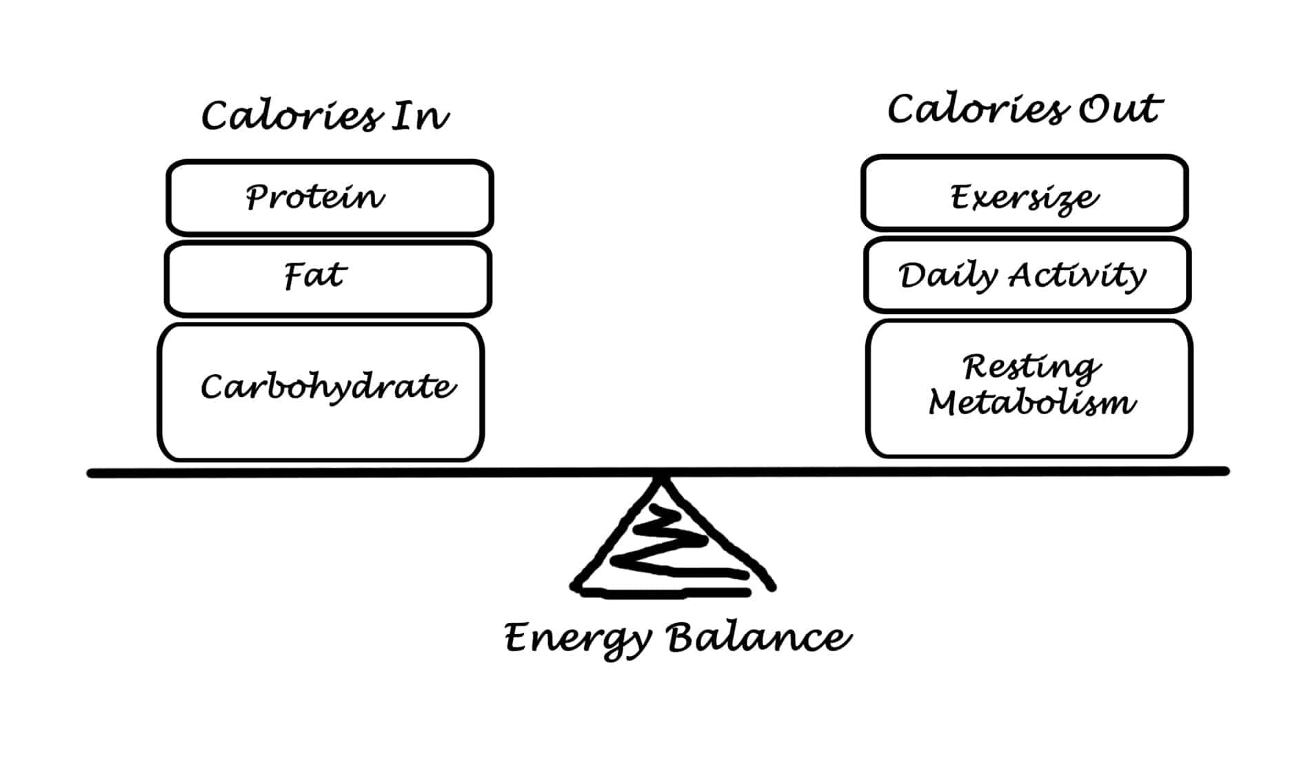 energy balance and tdee calculator