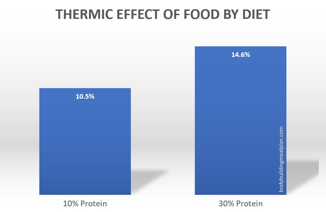thermic effect of food by diet