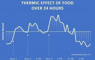 thermic effect of food over 24 hours