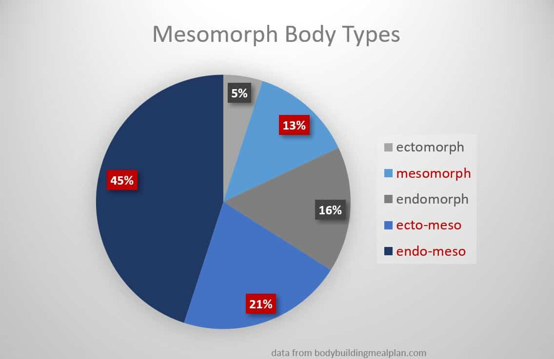 what is a mesomorph body type